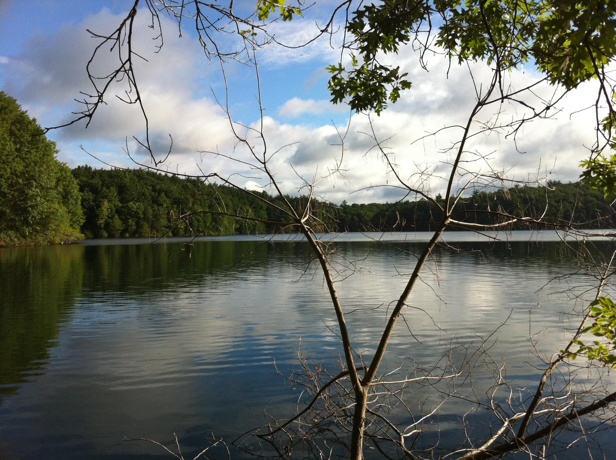 an biography of walden pond Henry david thoreau lived for two years, two months, and two days by walden pond in concord, massachusetts his time in walden woods became a model of deliberate and.